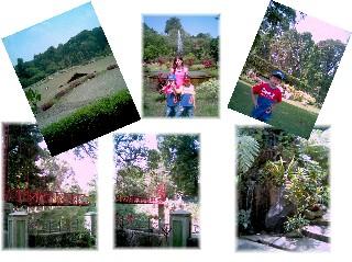 Kebun RayaBogor