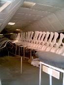 MuseumZoologi